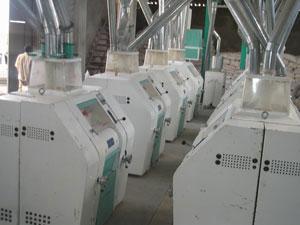 pabrik-terigu-indonesia